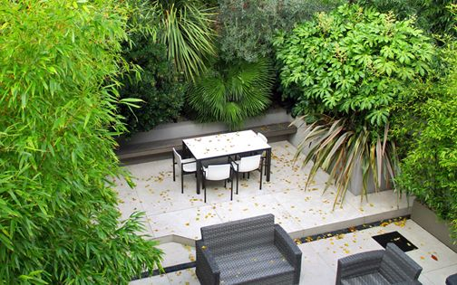 lush large courtyard garden project