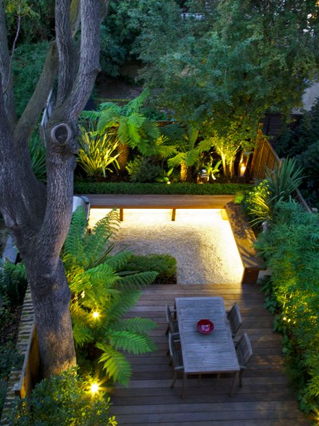 Tropical Garden Designs Modern Exotic Gardens London Mylandscapes