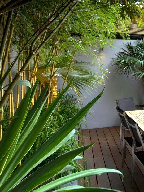 Low Maintenance Garden Designs Modern Minimal Outdoor Upkeep