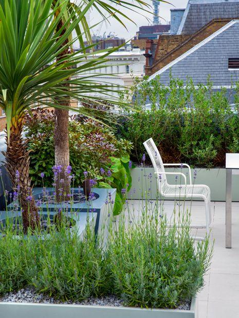 Roof Terrace Ideas London Inspiration Design Concepts