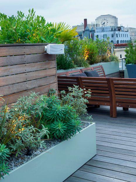 Roof Terrace Planting Ideas Modern Rooftop Design