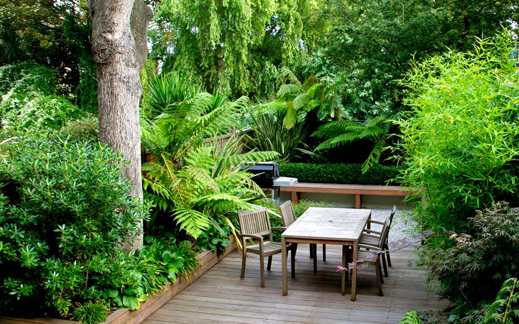 modern garden design principles  ideas and inspiration by mylandscapes