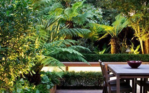 exotic landscape design