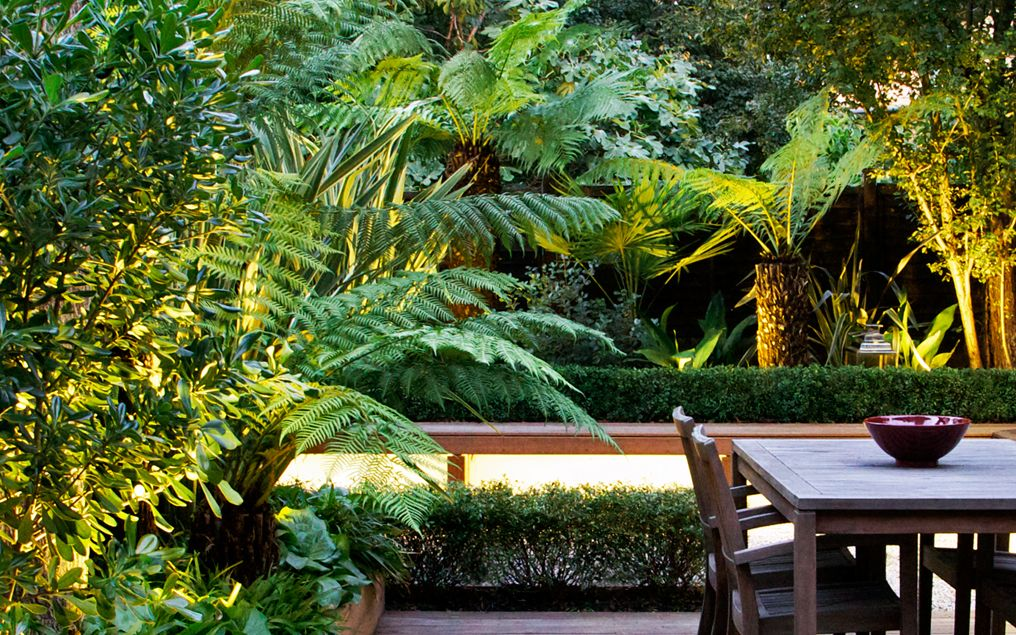 Tropical garden designs modern exotic outdoor space london for Tropical garden design