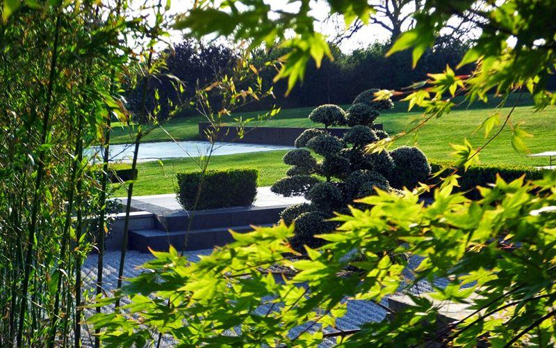Mid-Century Modern – David Thorne Landscape Architect |German Contemporary Landscape Architecture