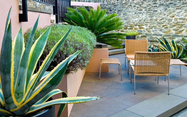contemporary courtyard garden design london
