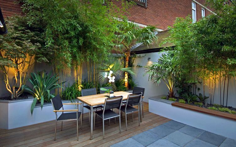 palm and bamboo modern london garden