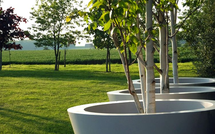 environmental modern tree planting countryside landscape garden