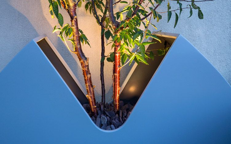 specially made roof garden tree planter