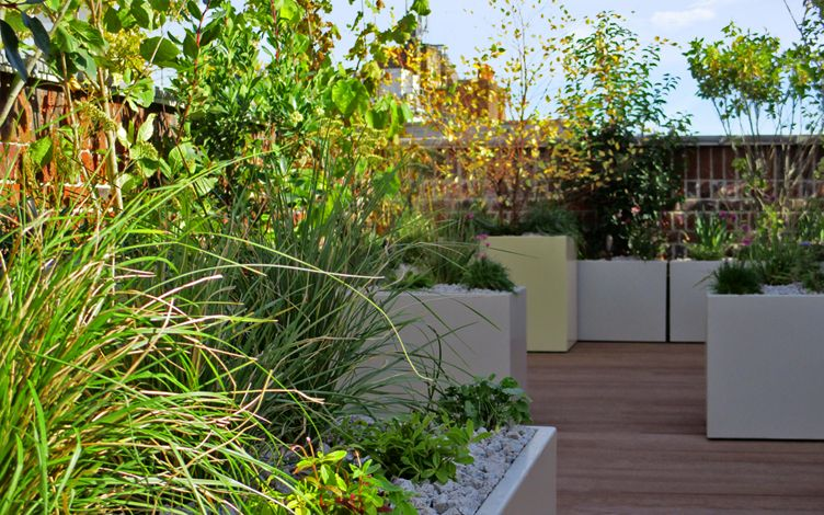 natural roof garden design