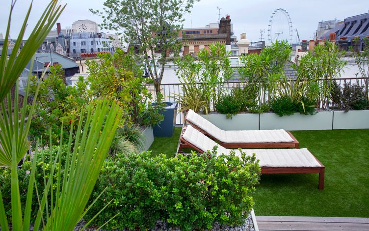 Roof garden design contemporary roof gardens london for Roof garden pictures
