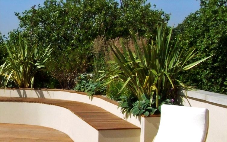 architecturally planted roof terrace