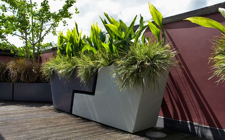 roof garden planter pairs focal point impact