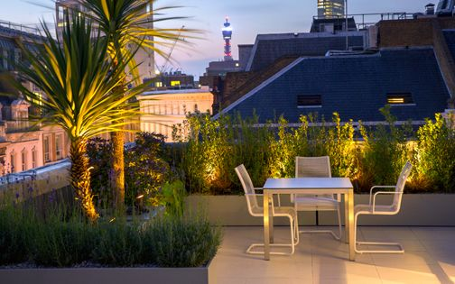 architectural roof garden design