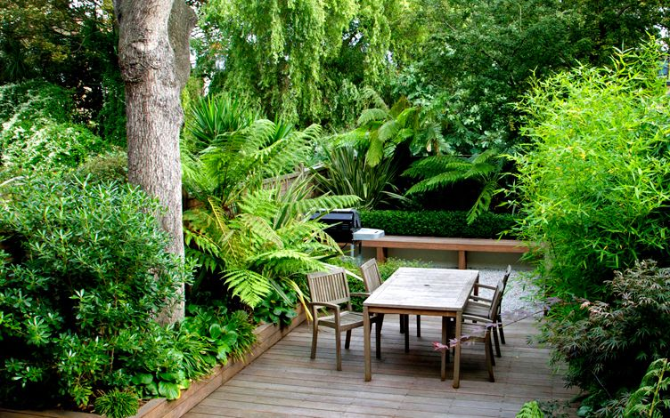 evergreen structural planting design london garden