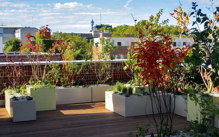 eco friendly roof garden design with native flora