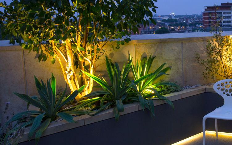 rooftop planting design with lighting