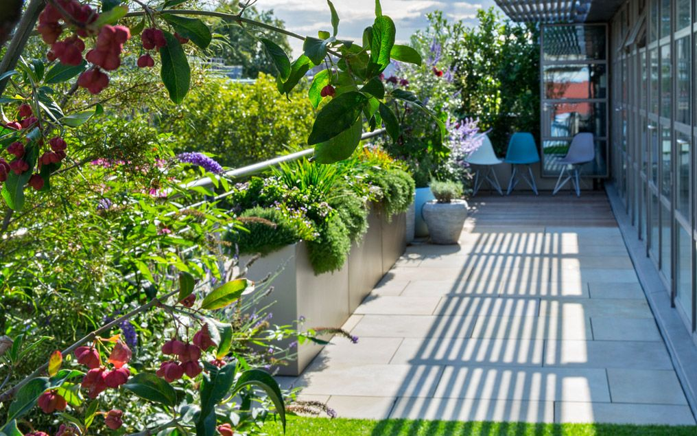 Sustainable roof terrace