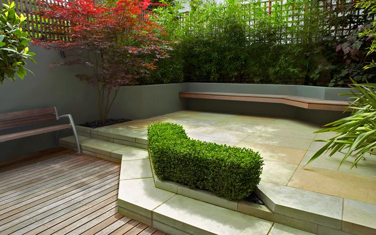 modern patio garden london structural planting